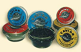 Caviar faqs corporate flight attendant for Caviar comes from what fish